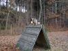 trenink_listopad_2012_101