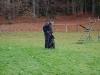 trenink_listopad_2012_041