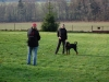 trenink_listopad_2012_043