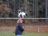 trenink_listopad_2012_059