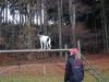trenink_listopad_2012_061