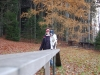 trenink_listopad_2012_063