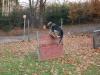 trenink_listopad_2012_082