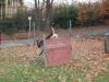 trenink_listopad_2012_083