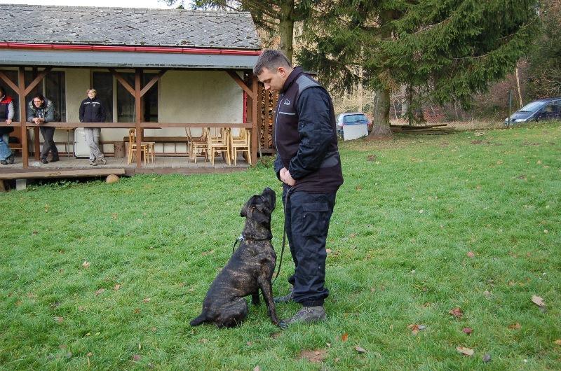 trenink_listopad_2012_035
