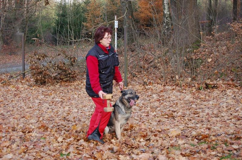 trenink_listopad_2012_088